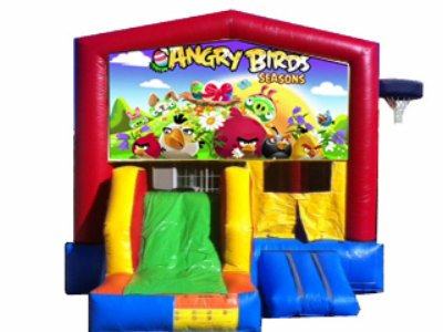 http://norcaljump.com/upload/2013-07-19/5-1-combo-front-slide-angry-birds.jpg