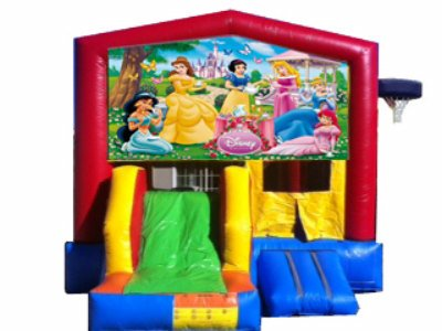 http://norcaljump.com/upload/2013-07-19/5-1-combo-front-slide-princess.jpg