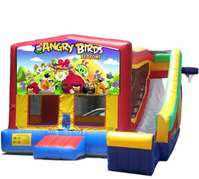 http://norcaljump.com/upload/2013-07-19/5-1-combo-side-slide-angry-birds.jpg