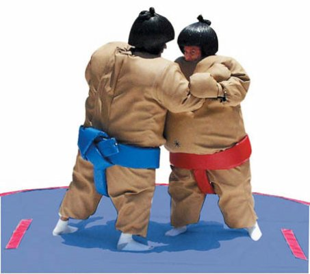 http://norcaljump.com/upload/2013-07-19/sumo-suits.jpg