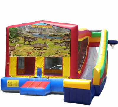http://norcaljump.com/upload/2013-07-20/5-1-combo-side-slide-dinosaurs.jpg