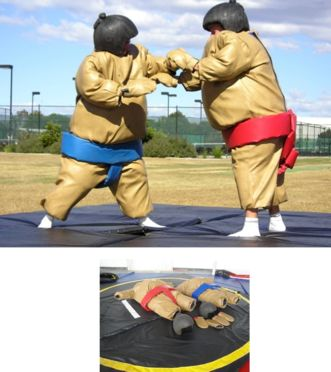 http://norcaljump.com/upload/2013-09-17/toddler-sumo-suits.jpg