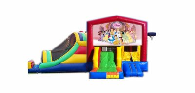 http://www.norcaljump.com/upload/2014-03-01/double-big-front-slides--disney-princess-.jpg