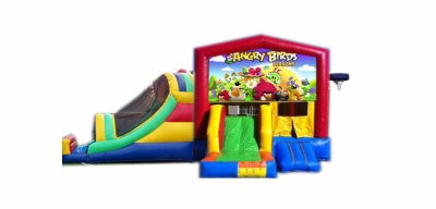 http://www.norcaljump.com/upload/2014-03-01/double-big-front-slides-angry-birds.jpg