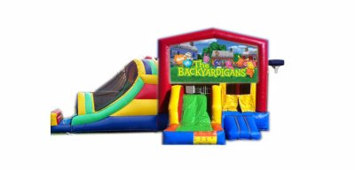 http://www.norcaljump.com/upload/2014-03-01/double-big-front-slides-backyardigans-.jpg
