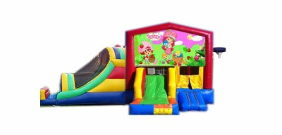 http://www.norcaljump.com/upload/2014-03-01/double-big-front-slides-strawberry-shortcake-.jpg