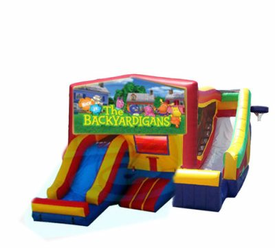 http://www.norcaljump.com/upload/2014-03-01/double-front-side-slides-backyardigans.jpg