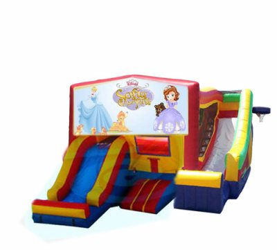 http://www.norcaljump.com/upload/2014-03-01/double-front-side-slides-princess-sophia.jpg