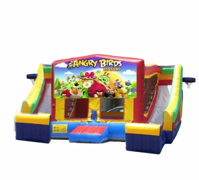 http://www.norcaljump.com/upload/2014-03-01/double-side-slides-.angry-birds.jpg